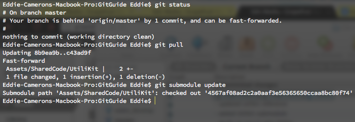 Command line pull submodule changes